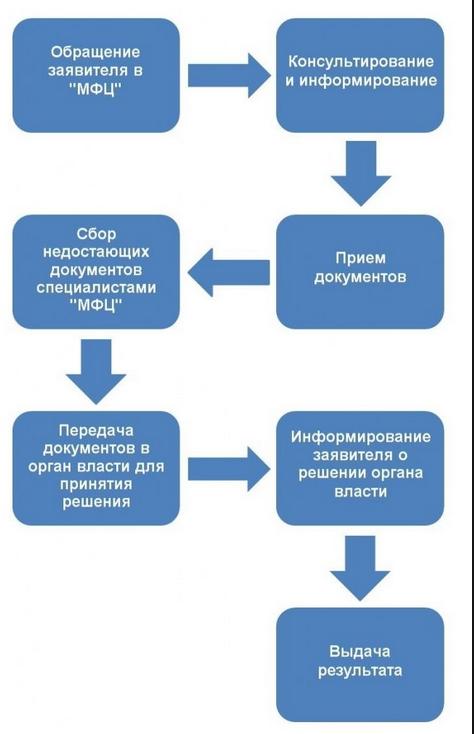 Отчет по практике в МФЦ на заказ